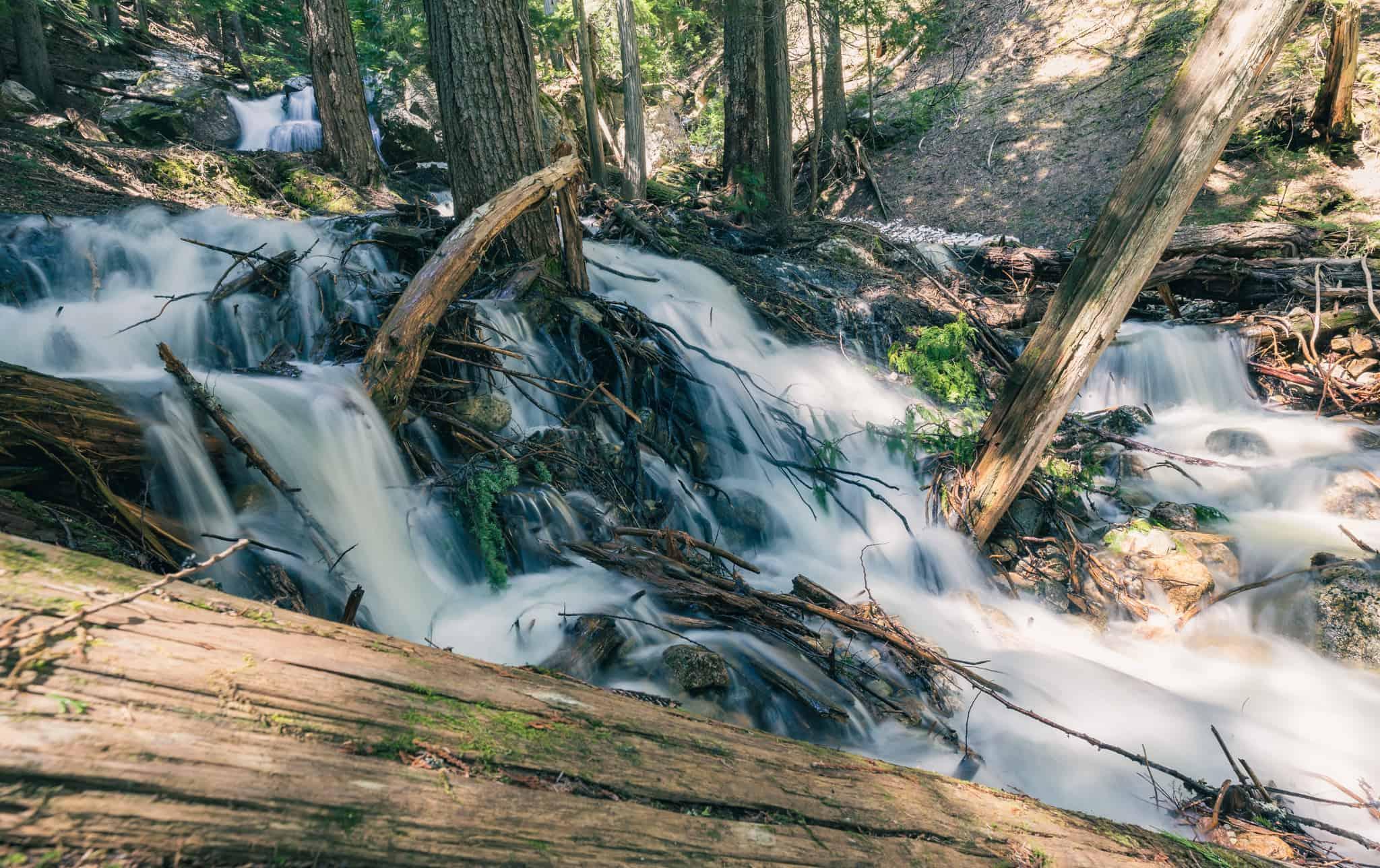 Mount Revelstoke National Park Hiking