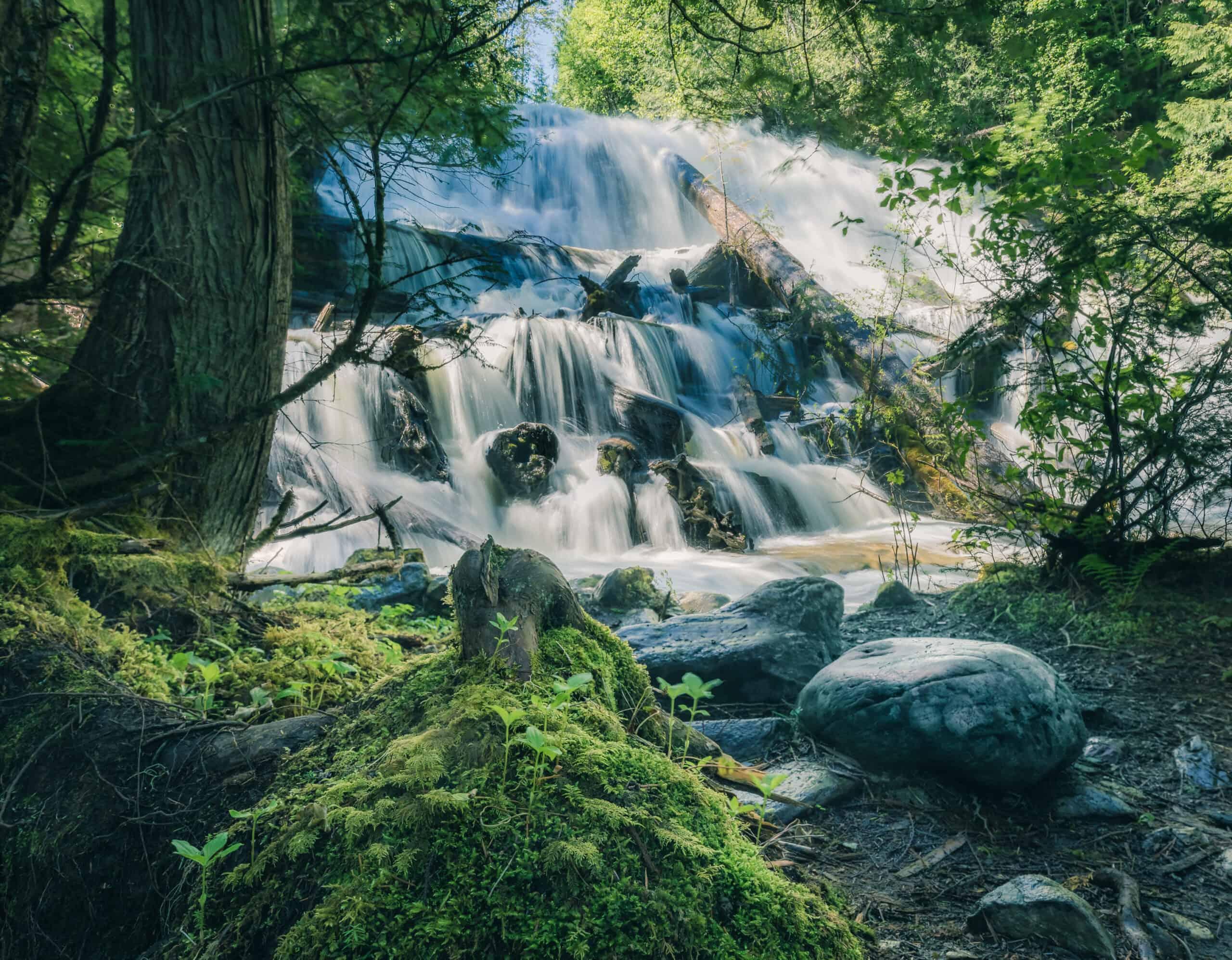 Revelstoke Waterfalls Moses Falls