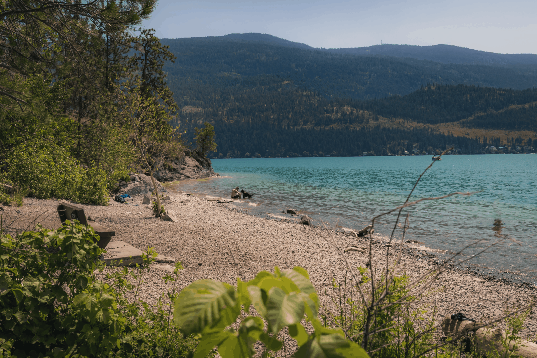 Kalamalka Lake Dog Beach